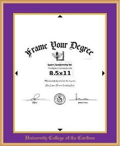 satin gold metal diploma frame with gold foil embossing vertical